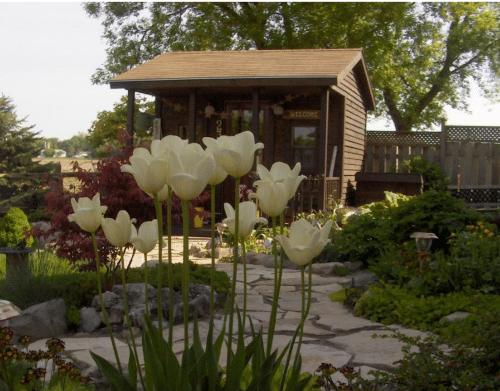 shed-decor-2