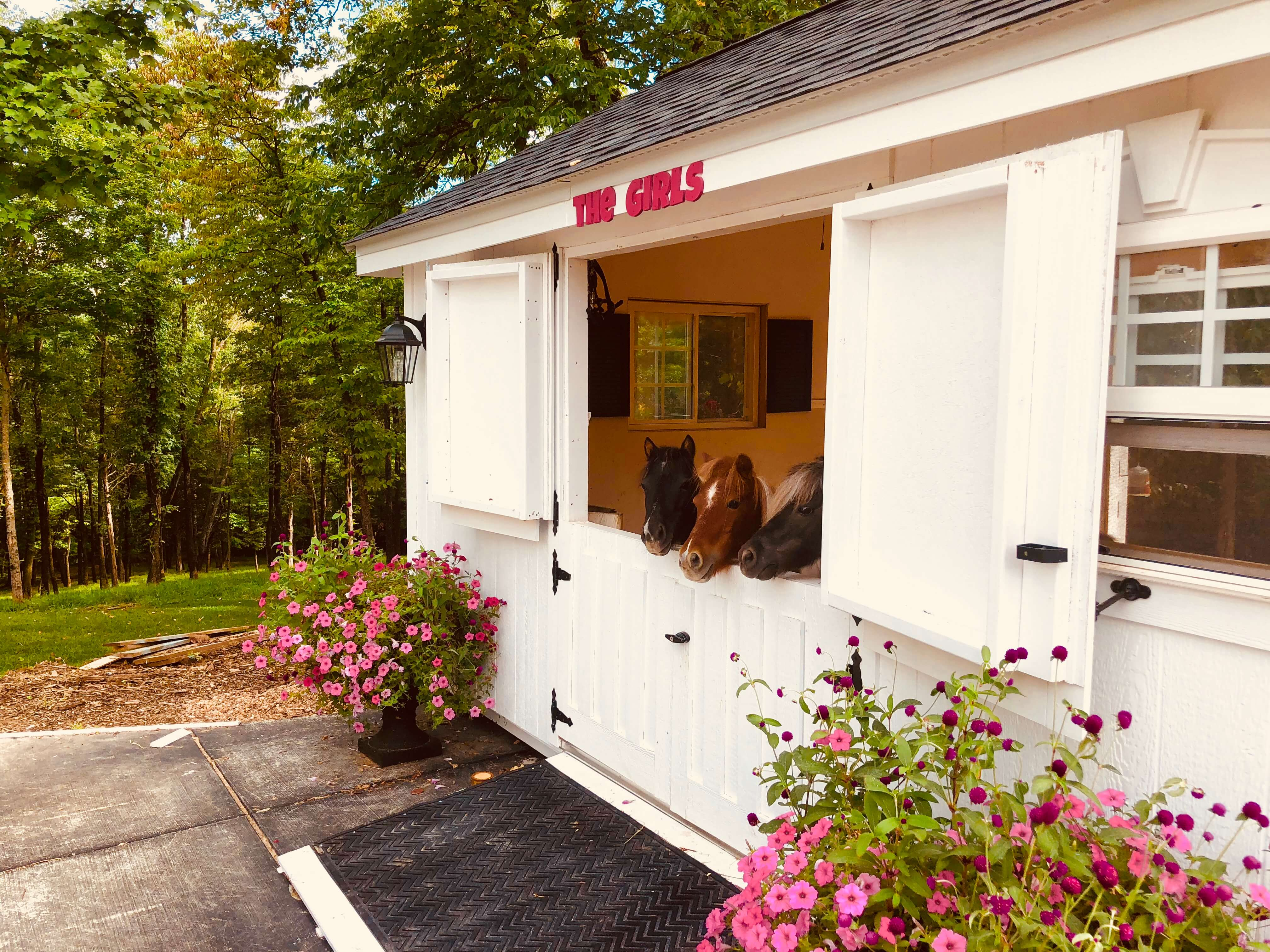 Custom Tiny Horse Barn